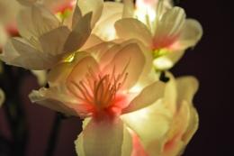 Cherry blosson lamp
